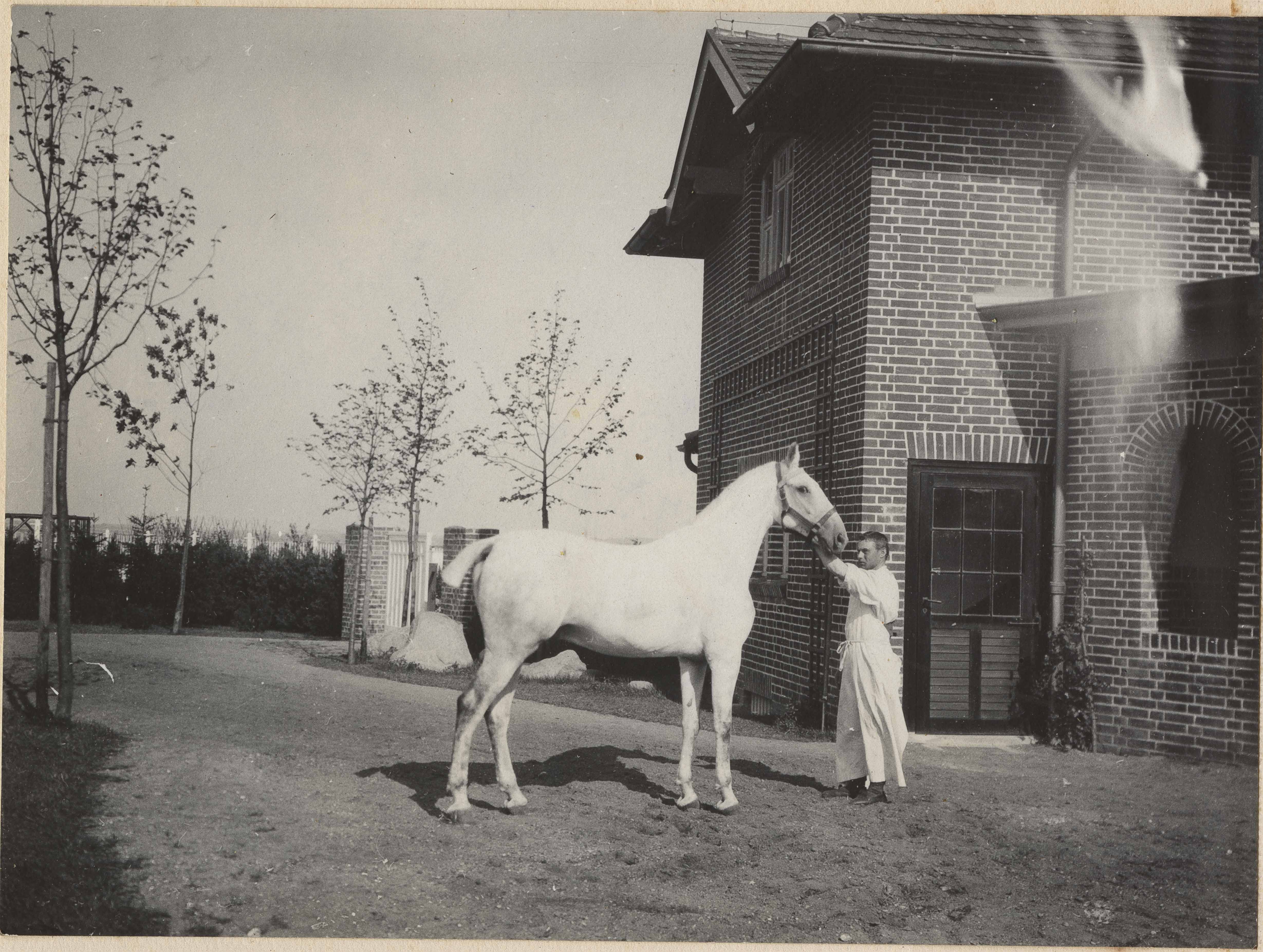 White horse and hostler in Altona
