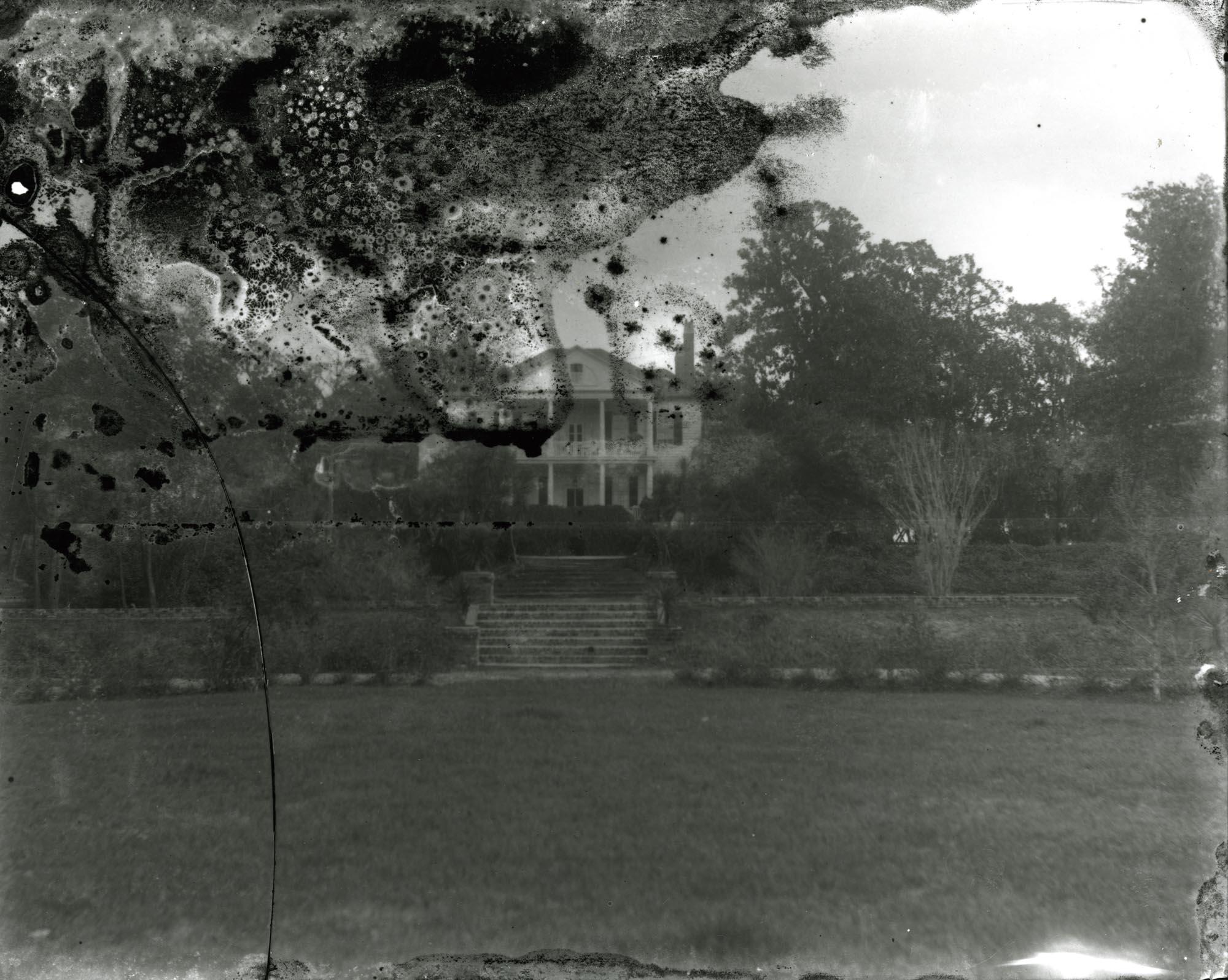 Plantations, Arcadia