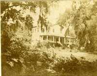 Plantations, Unknown