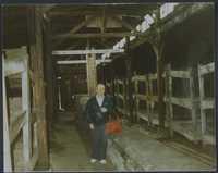 Pincus Kolender at Auschwitz 1987