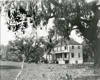 Plantations, Willtown Bluff Plantation