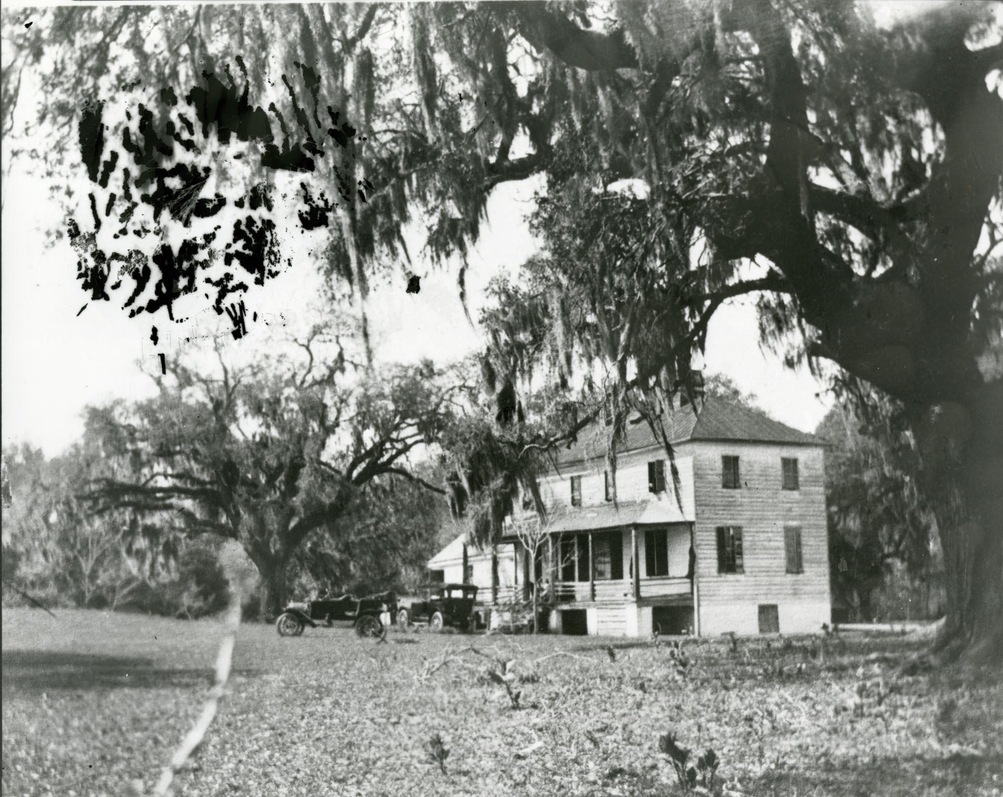 Plantations, Willtown Bluff Plantation
