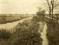 Plantations, Woodville Plantation