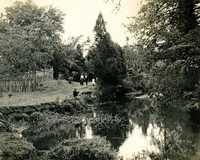 Plantations, Mulberry Plantation