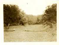 Plantations, Medway Plantation