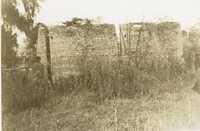 Plantations, Oak Vale Plantation