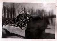Buchenwald image 08, side 1