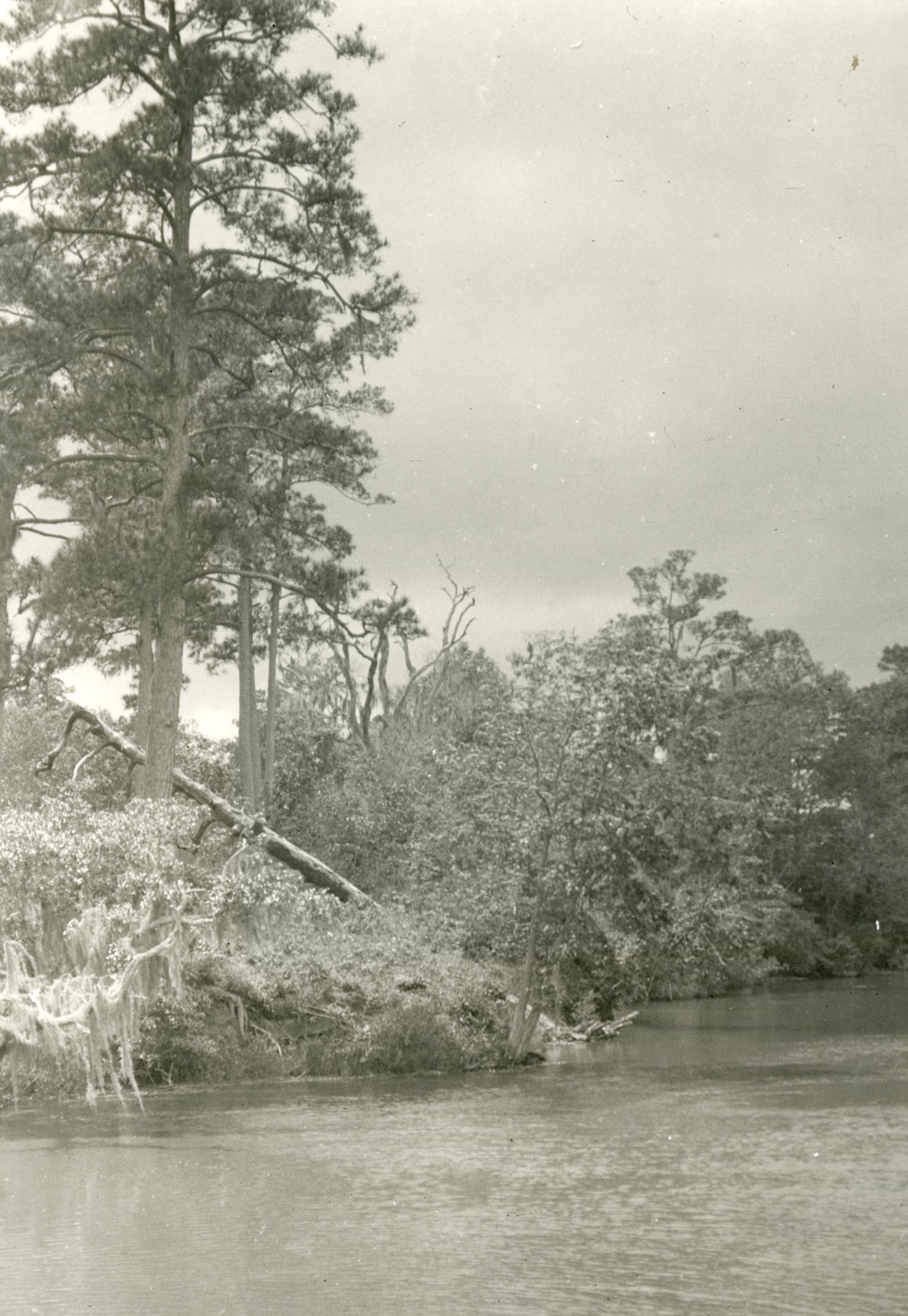 Plantations, Yeamans Hall Plantation