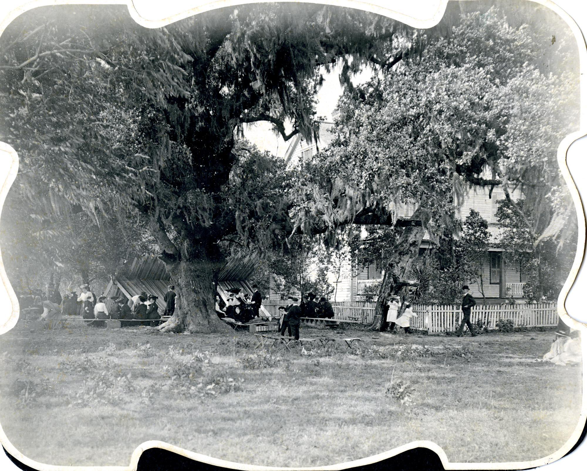 Plantations, McLeod Plantation