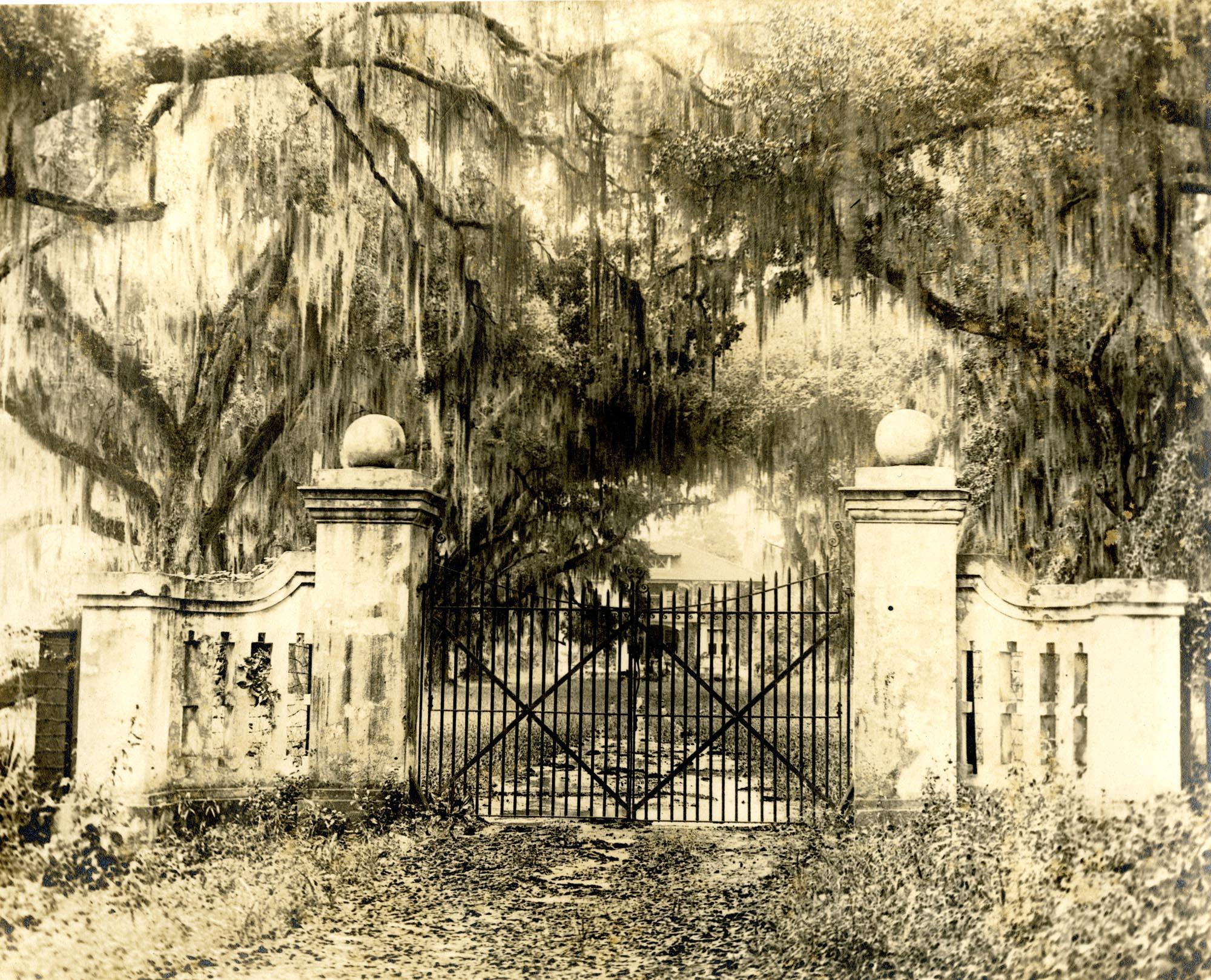 Plantations, Oak Lawn