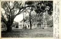 Plantations, Dixie