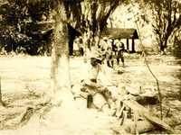 Plantations, Blake's Plantation