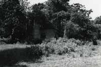 Plantations, Spring Island Plantation